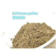 Echinacea pollen Herb powder and Extract Natural powder material for soap powder very good pigment