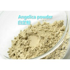 angelica powder Herb powder and Extract Natural powder material for soap powder very good pigment